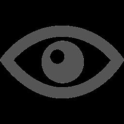 眼の後遺障害