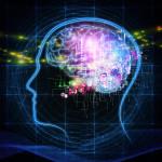 高次脳機能障害に関する記事をまとめました。